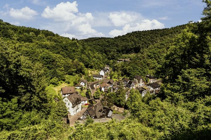 grenzhausen, grenzau, wald, natur, kannenbäckerland, westerwald, naturkulturkeramik, wandern