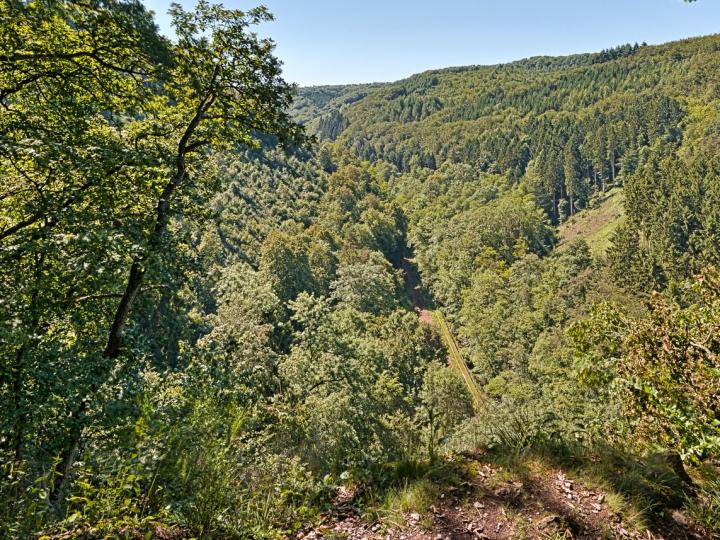wald, brexbachtal, natur, bahn, tal, sonne, wandern, westerwald, kannenbäckerland, grenzhausen, höhr, naturkulturkeramik