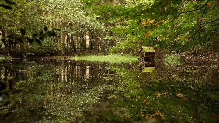 see, schwarzes meer, natur, natur-kultur-keramik, höhr-grenzhausen, spiegelung