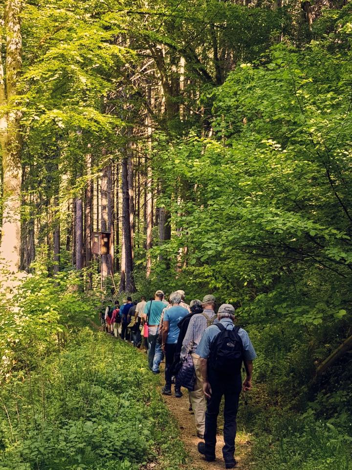 westerwald, höhr-grenzhausen, natur-kultur-keramik, brexbachtal