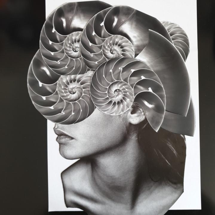 María Elisa Quiaro - Evolution