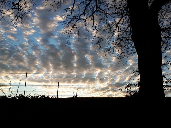Morgendliche Wanderung in der Natur und in der Stille