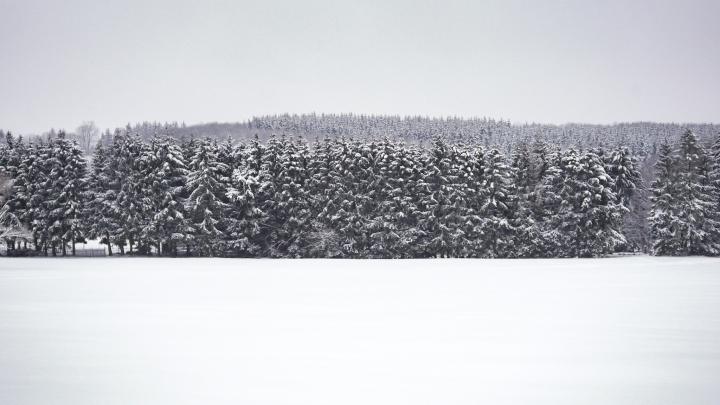 Salzburger Kopf Wingersportgebiet im Westerwald