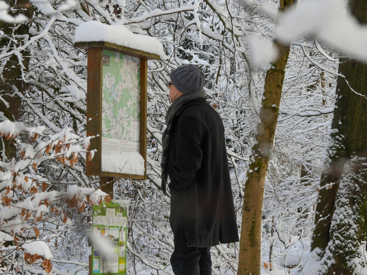 Ausflugsziel Westerwälder Seenplatte Winterlandschaft