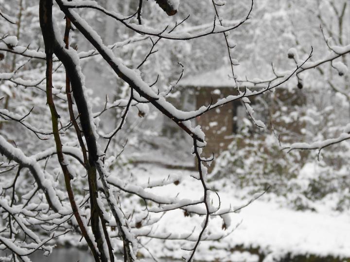 Schneewanderung um Höhr-Grenzhausen