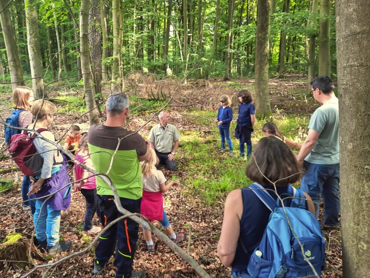 Dem Förster über die Schulter geschaut - Wanderung mit Kindern durch den Wald